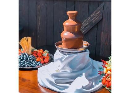 Аренда шоколадных фонтанов на детский праздник
